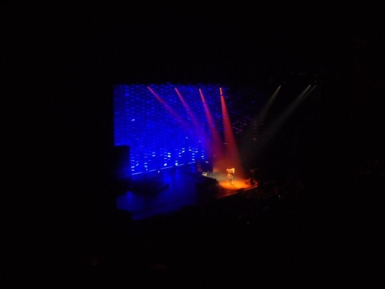 Regina Spektor from above, Chicago Theater